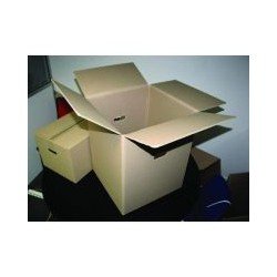 Paquet de 10 caisses de...